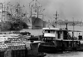 Cargo Ships, Port of Shanghai, Huangpu River, China 1986. Tug and moored shipping - Melanie Friend - 02-05-1986