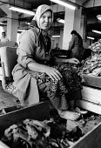 Turkish woman tobacco factory worker, Djebel region, 1993 near Kardzhali, Eastern Rhodopes, Bulgaria - Melanie Friend - 26-08-1993