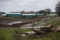 Empty pens, North Farm Livestock, Bayfield, Norfolk - John Harris - 14-10-2020