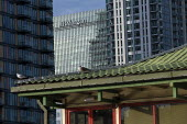 Canary Wharf, Docklands, Isle of Dogs, East London. JP Morgan, Lotus Chinese Floating Restaurant - Jess Hurd - 20-10-2020