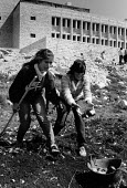 Birzeit University, West Bank, Land Day 1984. Planting trees to commemorate the 1976 shooting to death of six Palestinians, marking an important date in the Palestinian struggle against the Israeli oc... - Melanie Friend - 30-03-1984
