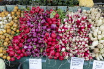 Michigan USA. Farmer's market stall selling Radishes - Jim West - 16-09-2020