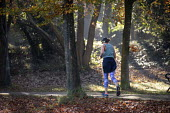 Runner amongst Autumnal beech trees, Clifton Downs, Bristol - Paul Box - 05-11-2020