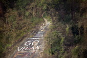 Go Vegan graffiti on a rock face, Avon Gorge, Bristol - Paul Box - 22-11-2020