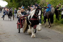 06-06-2015 - Appleby Horse Fair, Cumbria, dealers showing horses along Flashing Lane by trotting them at high speed to attract buyers © David Mansell