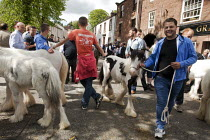 07-06-2015 - Appleby Horse Fair, Cumbria, Lee Smith horse dealing along the Sands © David Mansell
