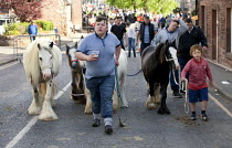 07-06-2015 - Appleby Horse Fair, Cumbria, horse dealing along the Sands © David Mansell