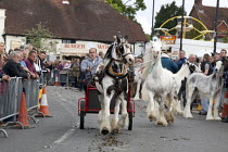 20-05-2015 - Wickham Horse Fair a traditional one day annual event, Hampshire. Horse dealers showing off their horses. © David Mansell