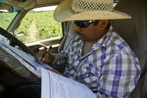 24-05-2012 - The crew foreman filling in forms recording and identifying workers for the U.S. Citizenship and Immigration Services. Form I-9, Employment Eligibility Verification Form documents the pickers he has h... © David Bacon
