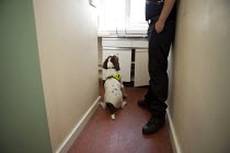 09-08-2007 - Police training sniffer dogs. © Duncan Phillips