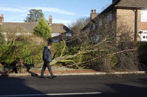 19-01-2007 - Storm damage caused by high winds, London. © Duncan Phillips