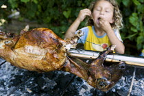 27-07-2008 - Child eats from the traditionally prepared spit roast lamb. Roma Gypsy wedding in Rome, Italy. © Jess Hurd