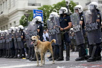 15-06-2011 - Confrontations between police and protesters outside the Greek parliament during a general strike against austerity cuts. Syntagma Square, Athens, Greece. © Jess Hurd