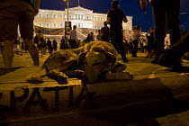 18-06-2011 - Riot dog, Loukanikos (the rebel dog) who hasn't missed a riot for years has a nap outside parliament. Demonstrations against austerity cuts. Syntagma Square, Athens, Greece. © Jess Hurd