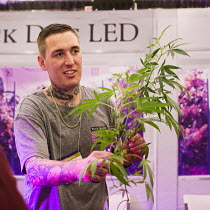 12-07-2015 - Denver, Colorado The INDO Expo trade show for marijuana industry selling goods and services to cannabis growers. A seller of LED grow lights shows samples of his marijuana plants. © Jim West