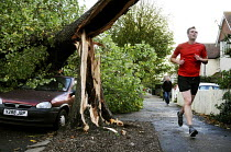 28-10-2013 - A jogger runs past a tree that has fallen onto a parked car. The morning after the storm in Brighton and Hove, East Sussex. © Nick Rain