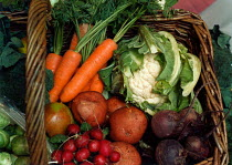 01-08-1999 - Basket of fresh organic fruit and vegetables. © Paul Carter
