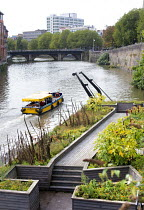 16-10-2014 - Seeds of Change a ballast seed garden by Brazilian artist Maria Thereza Alves, Castle Park, Bristol. Between 1680 and the early 1900s ships ballast from all over the world was used to weigh down the v... © Paul Box