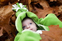 08-11-2012 - A small boy lies in the Autumn leaves, Westonbirt Arboretum, Forestry Commission, Wiltshire. © Paul Box