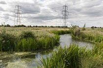 23-08-2014 - Electricity pylons cross marshland on the Kent shore of the Thames estuary. © Philip Wolmuth