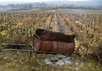 15-01-2008 - Vineyard in Burgundy, France. A homemade incinerator for dead vines which are removed during winter when the vines are dormant. © Joanne O'Brien