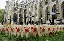 07-11-2012 - Visitors looking at the poppies commemorating the war dead in the field of remembrance beside Westminster Abbey in London. © Stefano Cagnoni