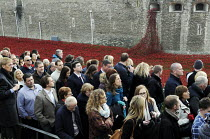 11-11-2014 - Visitors to the Tower of London art installation on Armistice Day, the 100th Anniversary of the year in which the First World War began. The moat displays 888,246 ceramic poppies, the completed art in... © Stefano Cagnoni