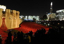 12-11-2014 - Visitors look on at the art installation, floodlit at night, by Paul Cummins in the moat at the Tower of London to commemorate one hundred years since the start of the First World War. 888,246 ceramic... © Stefano Cagnoni