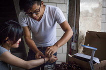 22-09-2015 - Young people making handmade jewellery in a Chinese youth hostel to sell to wealthy Chinese Tourists. Lijiang, Yunnan Province, China. © Connor Matheson