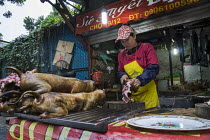 09-12-2015 - Hanoi, Vietnam, A small shop selling dog meat on the street © David Bacon