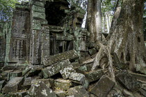 21-12-2015 - Cambodia, Tree roots take over the ruins in Ta Prohm Temple where the movie Indiana Jones was filmed.Copyright David Bacon © David Bacon