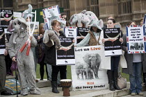 06-02-2017 - Protest for full ban on the ivory trade as it is debated in Parliament, Westminster, London © Jess Hurd
