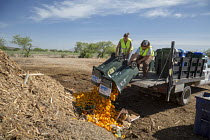 16-04-2017 - Tucson, Arizona, USA. Compost Cats, University of Arizona students composting food waste from the city of Tucson, diverting it from landfills. The compost is then sold for use on farms and gardens © Jim West