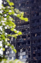 14-06-2017 - Grenfell Tower Fire. Burned out flats at Grenfell Tower after the raging inferno that engulfed the West London tower block resulting in the loss of many lives © Stefano Cagnoni