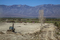 16-08-2017 - Coachella Valley, California, USA, Constructing wetlands to remediate and suppress the rising dust from the receding shoreline of the Salton Sea. The project is on the reservation of the Torrez Martin... © David Bacon