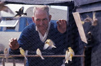 11-08-1962 - Man with his caged birds, travellers camp near Slough 1962 © Romano Cagnoni