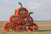 03-11-2017 - Uvalde, Texas USA Bales of hay in a field painted as pumpkins for halloween © Jim West