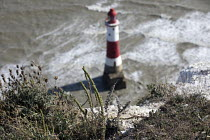28-07-2018 - Beachy Head Lighthouse, Beachy Head is a Chalk headland and suicide spot in East Sussex © Jess Hurd