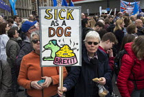 23-03-2019 - People's Vote march, London. For a second EU referendum © Martin Mayer