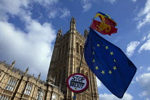 27-03-2019 - Anti Brexit protest flags, Parliament, Westminster, London © David Mansell