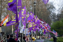 29-03-2019 - Pro Brexit protests on the day the UK was meant to leave the EU, Westminster, London. UKIP flags flying on the edge of College Green. © David Mansell