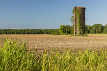 15-05-2019 - Lorman, Mississippi, USA: Old gain silo in a plowed farm field © Jim West