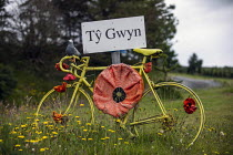 25-06-2019 - Yarn bombing or guerrilla knitting in Llwyngwril, the quirky little Welsh village knits creations through the winter as a community project to decorate the village in the summer months, Cambrian Coast... © Jess Hurd