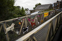 25-06-2019 - Summer Fete and Dog Show, Yarn bombing or guerrilla knitting in Llwyngwril, the quirky little Welsh village knits creations through the winter as a community project to decorate the village in the sum... © Jess Hurd