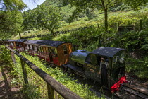 28-06-2019 - Restored Edward Thomas narrow gauge steam locomotive, built in 1921, carrying tourists on the volunteer run, Heritage Talyllyn Railway, Dolgoch Falls Station, Tywyn, Snowdonia National Park, Wales. © Jess Hurd