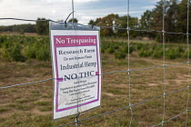 10-10-2019 - Michigan, USA: Warning sign, Paw Paw Hemp Company discouraging trespassing, explaining that the hemp plants do not contain THC, the active ingredient in the nearly-identical marijuana plant. Many Amer... © Jim West