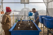 13-11-2019 - Hanksville, Utah, USA: Researchers simulate living on Mars at the Mars Desert Research Station. 'Expedition Boomerang' brought Australian researchers to the station. Guy Murphy watering plants in the... © Jim West