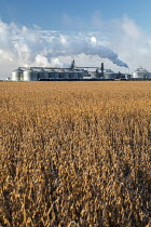 11-05-2019 - North Dakota, USA. Tharaldson Ethanol plant producing 153 million gallons of ethanol from corn annually © Jim West
