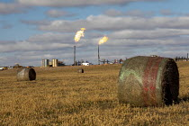 11-06-2019 - North Dakota, USA Natural gas flaring off at an oil production site, Bakken shale formation, hay bales and agriculture © Jim West