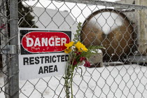 01-19-2020 - Madison Heights, Michigan USA, flower on the fence, Environmental Protection Agency Superfund cleanup site where the owner of Electro-Plating Services dumped toxic chemicals. A green ooze containing h... © Jim West